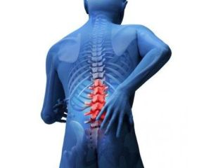 Back Injury Workers Compensation